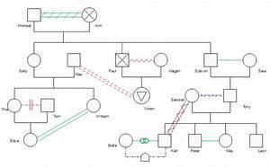 Entity Relationship Diagram Example Family Tree