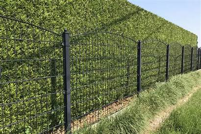 Wire Fence Panels Curved Different Examples Uses