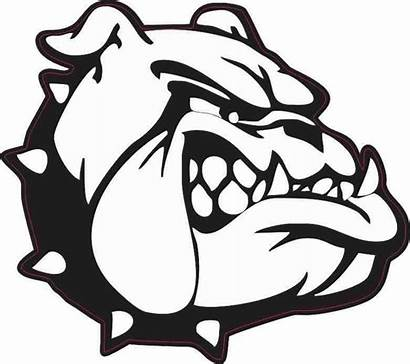Bulldog Clipart Sticker Mascot 5in Clip Bulldogs