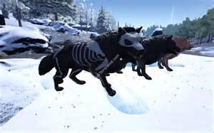 Dire Wolf Skeleton Ark