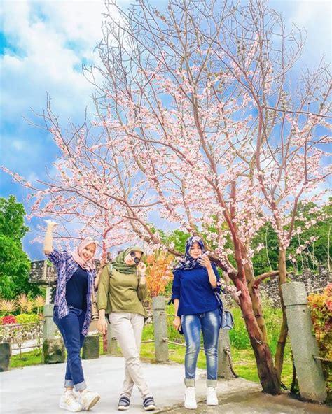 Taman sakura merupakan salah satu destinasi wisata di blitar yang meskipun masih anyar namun menariknya lagi taman sakura ini bukan hanya diburu sebagai wisata selfie saja lho tetapi ada nilai. The Lost World Castle, Wisata Taman Bunga Sakura di Jogja