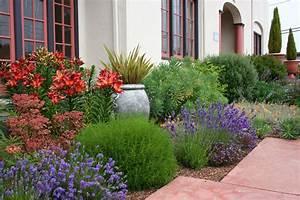 Mediterranean garden design how to create a tuscan garden for Garden plant design