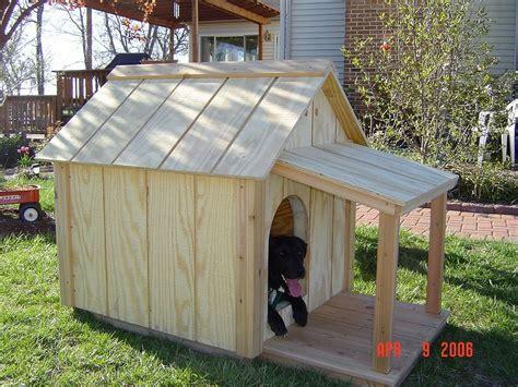 unique insulated dog house building plans  home plans design