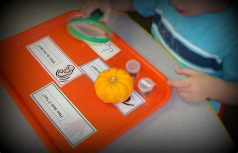 more pumpkin activities in preschool 508 | pumpkinkid