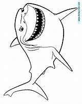 Coloring Bruce Nemo Finding Pages Shark Disney Sheet Clipart Disneyclips Pixar Colouring Printable Ray Mr Clip Squirt Anchor Template Darla sketch template