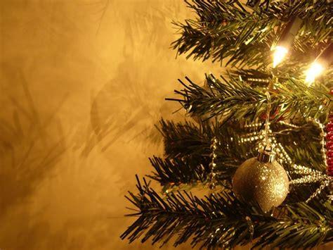 como celebrar la navidad pagina nueva 1 como celebrar la