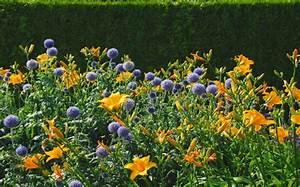 Blumen Für Schattige Plätze : buchempfehlung attraktive beete gestalten ~ Michelbontemps.com Haus und Dekorationen