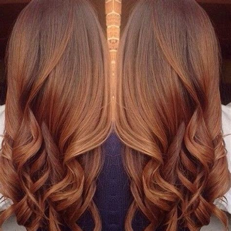 chestnut color hair best 25 chestnut hair colors ideas on what is