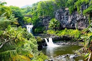 how to plan the perfect hawaii honeymoon smartgroom With maui or honolulu for honeymoon