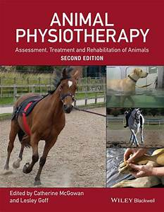 Animal Physiotherapy Assessment  Treatment And