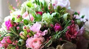 Blumen Bewässern Mit Wollfaden : blumen adler elisabeth kneucker e k nymphenburgerstr ~ Lizthompson.info Haus und Dekorationen