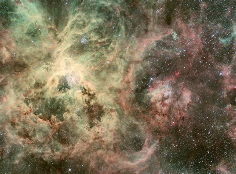 APOD: 2010 May 18 - Tentacles of the Tarantula Nebula