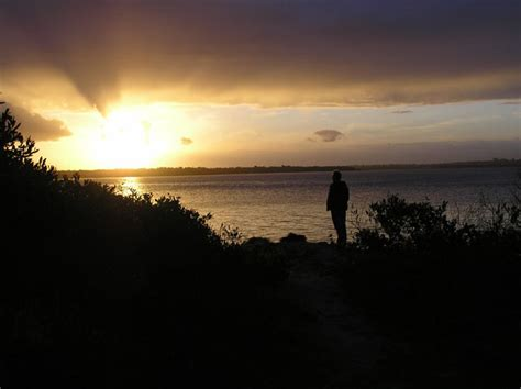 man  beach  sunset  stock photo public domain
