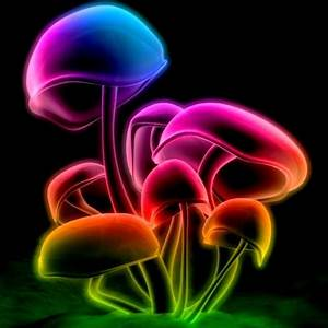 Glowing Psychedelic Mushrooms [pic]