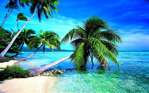 Beach Hd Wallpapers Desktop Pictures