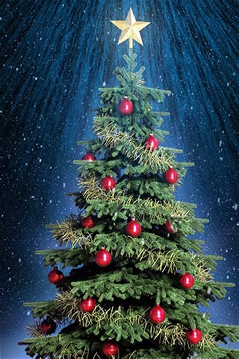 Free Christmas Wallpaper For Cell Phones Wallpapers9