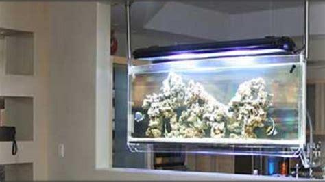 cantiknya dekorasi ruangan  model akuarium modern