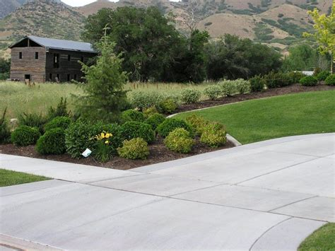 landscaping and driveways driveway and property line landscape privacy fence hedge pinterest driveways landscaping