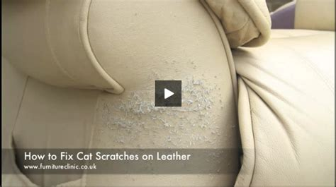 how to fix a leather how to repair cat scratches on leather