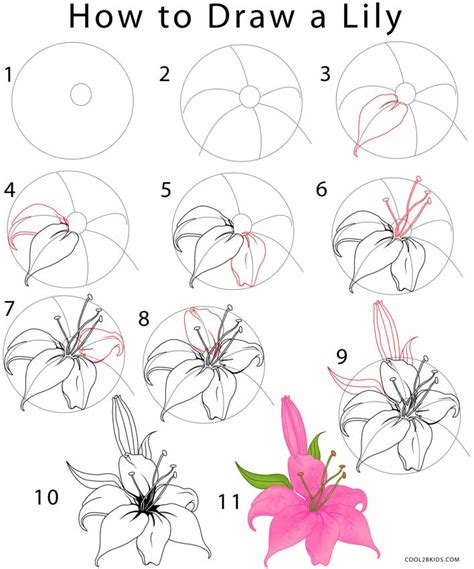 How To Design A Flower Garden Step By Step how to draw a step by step pictures cool2bkids