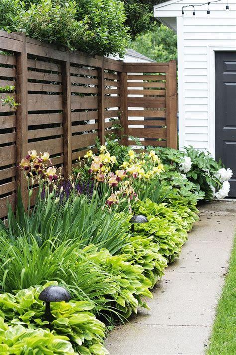 Backyard Privacy Landscaping by Best 25 Backyard Landscaping Privacy Ideas On