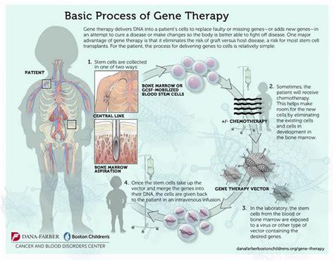 gene therapy  pediatric diseases dna therapy dana