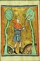 Eva's historical costuming blog: 12th century headwear for men