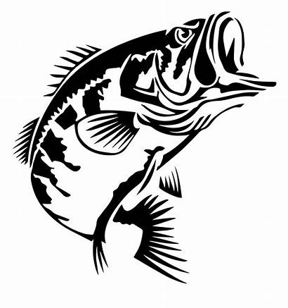 Bass Silhouette Largemouth Fishing Jumping Crappie Water