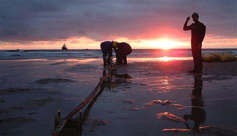 Web Trouble The Hidden Cables Under Cornish Beach