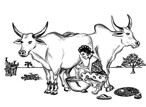 indian farmer milking  coloring pages color luna