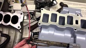 Fox Mustang 5 0 Trick Flow Upper Intake Describing Vacuum