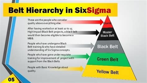 What Are The Belts In Six Sigma? Ferragamo Belt White 2008 Lexus Is350 Timing Or Chain Six Sigma Brown Certification Dyson Dc14 Won T Turn How To Install On Kenmore Electric Dryer 2007 Honda Cr V 2 4 Sure Grip Padded Sizing Parkway Brooklyn Ny Traffic