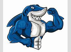 Shark Muscle Stock Vector Colourbox