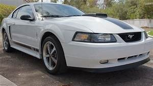 2003 Ford Mustang Mach 1 | F10 | Dallas 2011