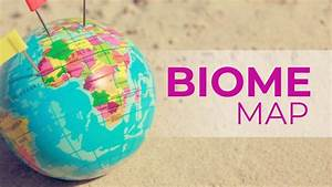 Biome Map  Definition  Examples  And Why It Is Important