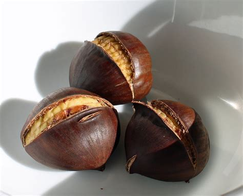 cooking chestnuts fanatic cook how to roast chestnuts