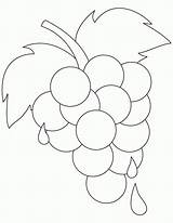 Grapes Coloring Pages Ripe Printable Fresh Grape Template Leaf Sheets Colouring Outline Bestcoloringpages Fruit Vine Popular Templates Getcolorings Pattern Coloringhome sketch template