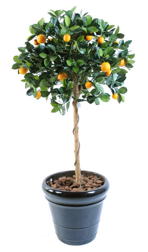 arbre artificiel fruitier oranger t 234 te en pot int 233 rieur h 125 cm vert orange