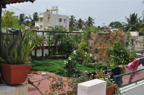 Home Garden Design Ideas India by Your View Here Is How You Can Create A Tiny Organic Farm