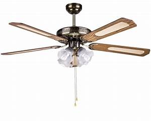 Ceiling outstanding in fans with lights big