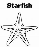 Starfish Coloring Animal Printable Template Seashells Sheets Cartoon Ocean Fish Templates Coloringfolder sketch template