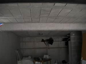 Comment Enduire Un Plafond : refaire le plafond cool comment refaire un plafond avec ~ Mglfilm.com Idées de Décoration