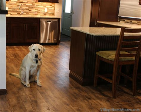 pet friendly hardwood floors tile archives village home stores