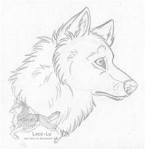 Wolf Head Sketch by Loco-Lu on DeviantArt