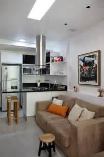 sq ft tiny studio condo  brazil