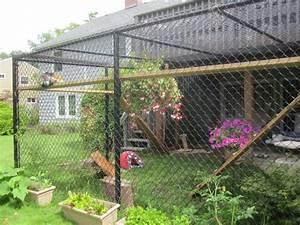 cat patio dog ideas pinterest With dog enclosure ideas