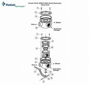 Pentair Sm  U0026 Smbw 2000 Series Backwash Valve Parts