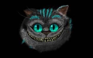 in cheshire cat cheshire cat photo