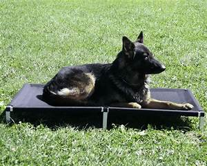 raised dog bed with ballistic cover With ballistic dog