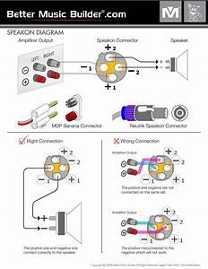 Solucionado  Colocarle A Mi Plnata Casera 2 Conectores